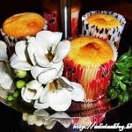 Briose cu goji si catina–reteta fara gluten