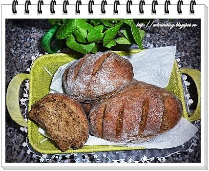 Black panini cu ciuperci si verdeturi uscate1