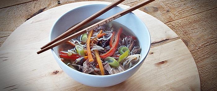 supa de rata cu taietei soba (ramen)2