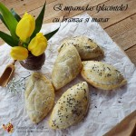 Empanadas (placintele) cu branza si marar2