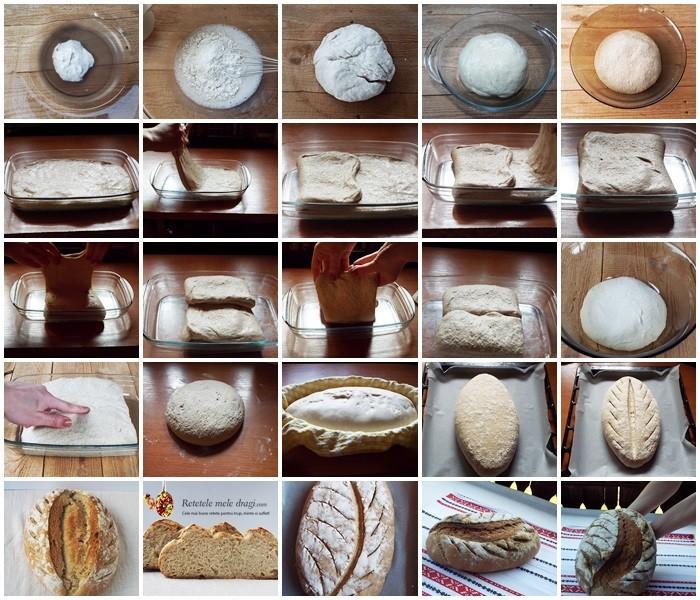 paine cu maia preparare