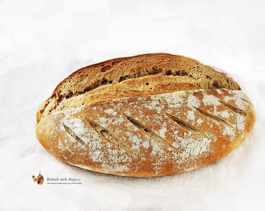 paine cu maia naturala