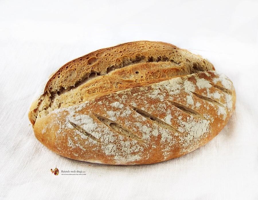 paine cu maia1