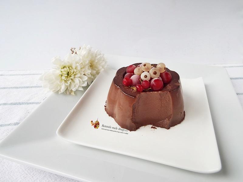jeleu de ciocolata1