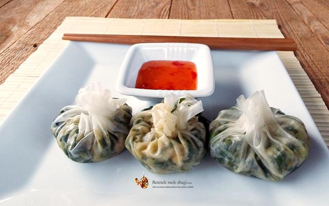 coltunasi chinezesti cu kale 1 (wontons)