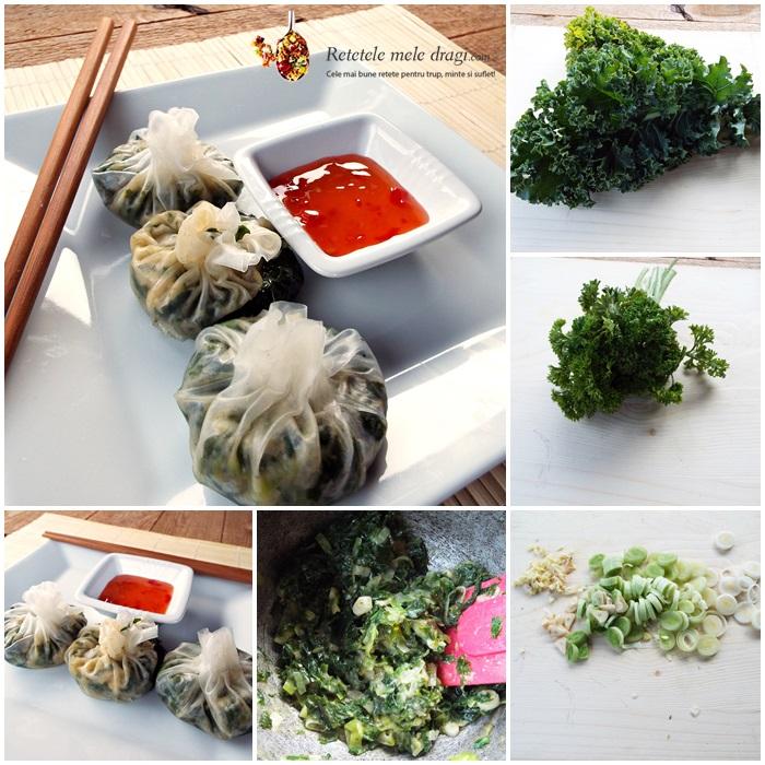 coltunasi chinezesti cu kale preparare (wontons)