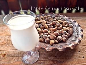 lapte de nuci asortate1