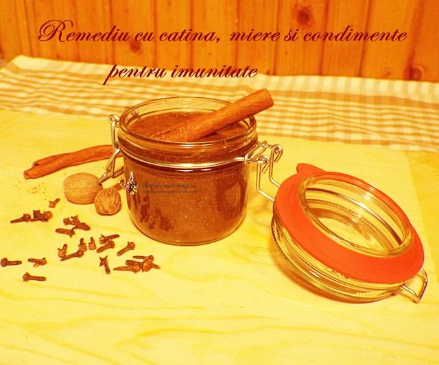 Remediu cu catina, miere si condimente pentru imunitate1