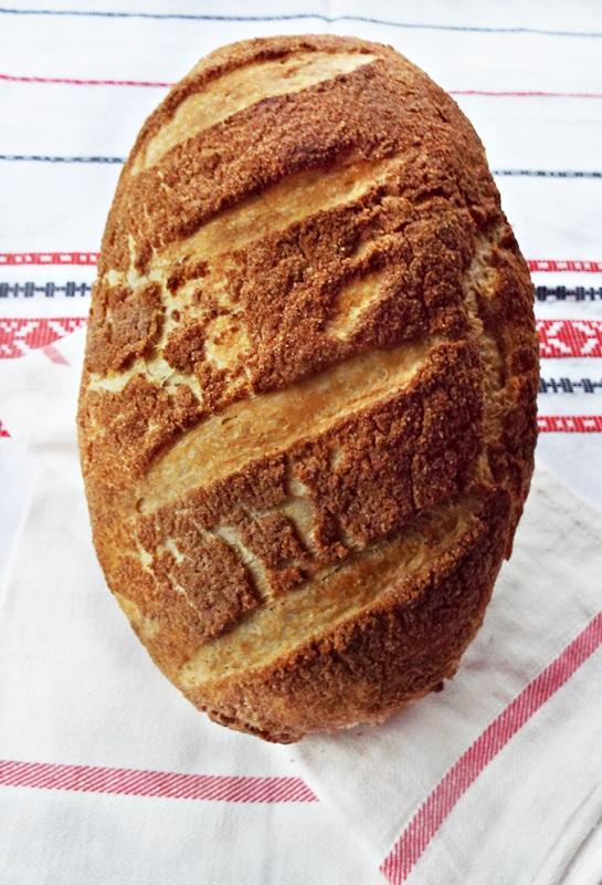 paine de casa tigru