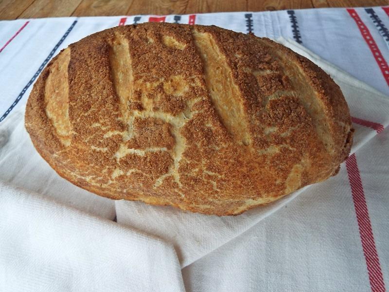 paine de casa tigru1