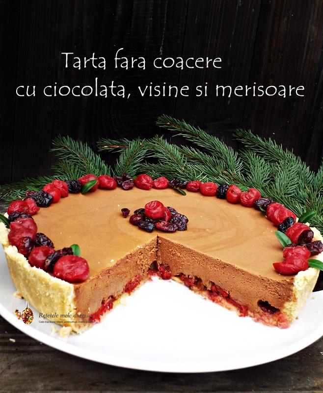 tarta fara coacere cu ciocolata, visine si merisoare