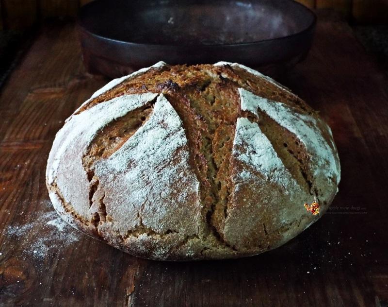 paine de secara cu maia naturala 1