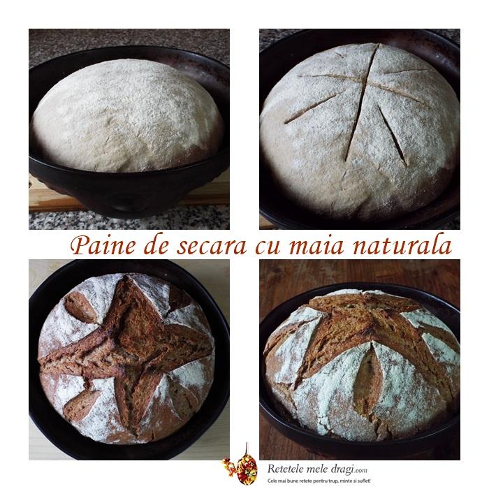 paine de secara cu maia naturala