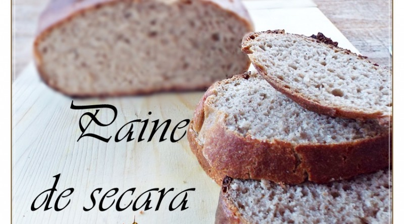 paine de secara 1