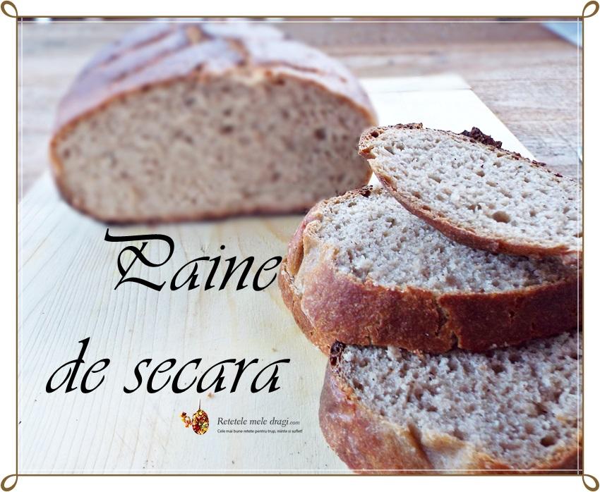 paine din faina integrala de grau