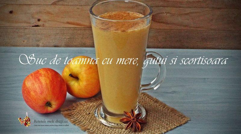 Suc de toamna din mere, gutui si scortisoara