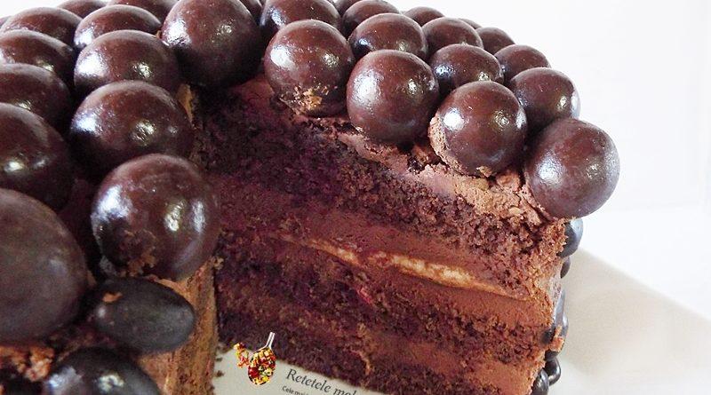 tort cu ciocolata si zmeura sectiune 2