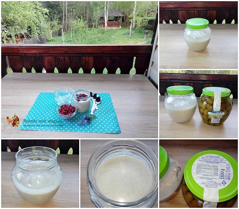cum se face iaurt de cocos in casa preparare