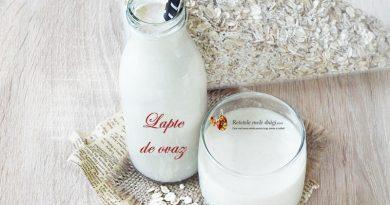 lapte de ovaz in optimum 600