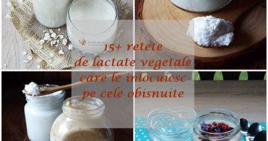 15+ retete de lactate vegetale, care le inlocuiesc pe cele obisnuite